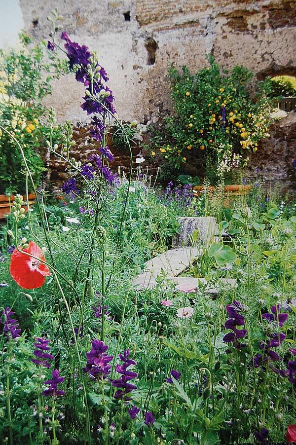 Gardengoodbye2