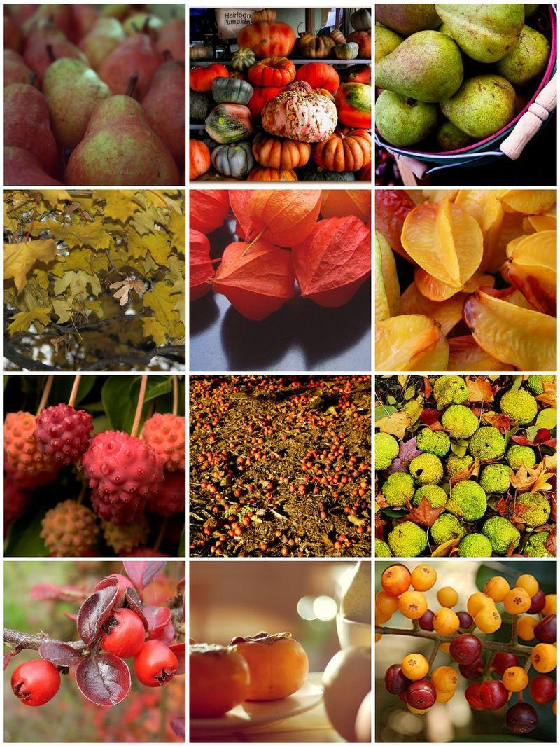Mosaicfallfruit