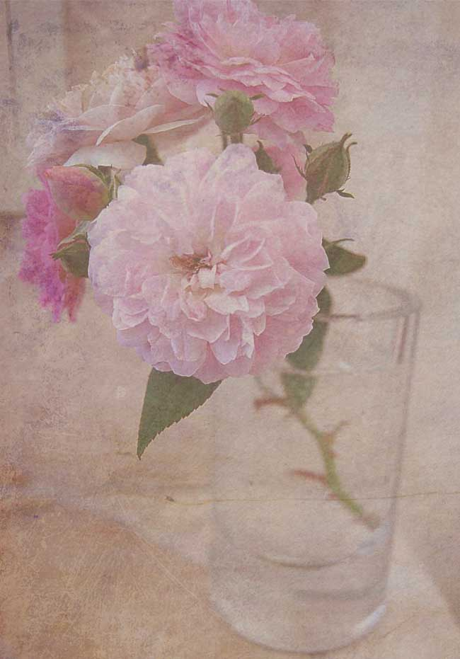 Flowers00